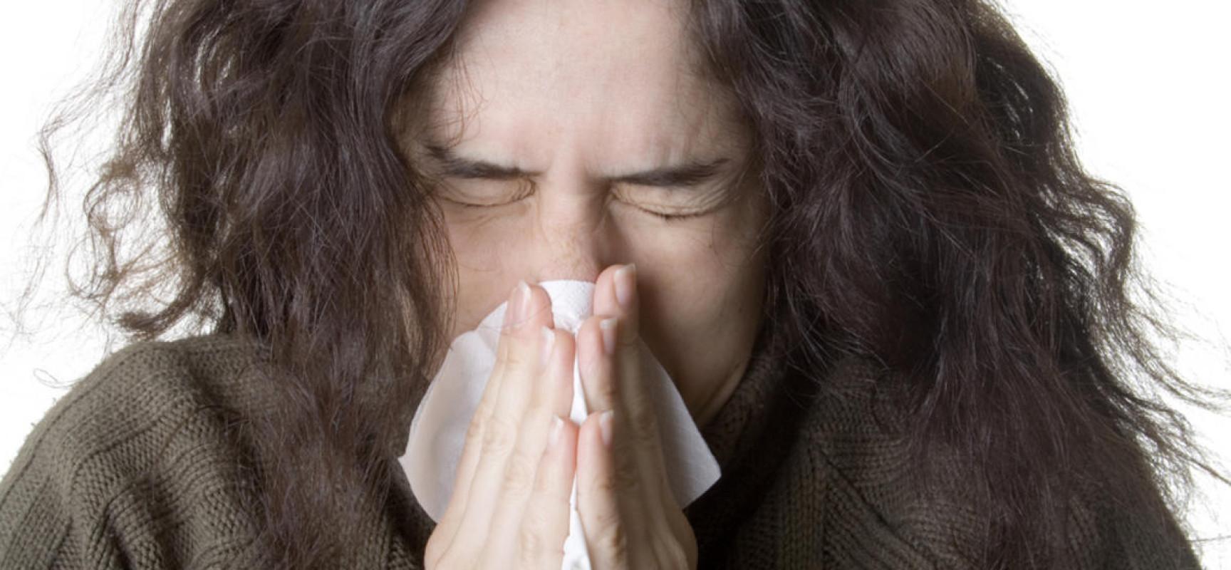 Kichaj na alergie