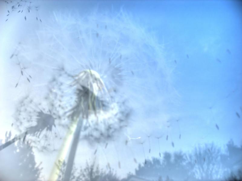 Alergia – prawdziwa zmora współczesności
