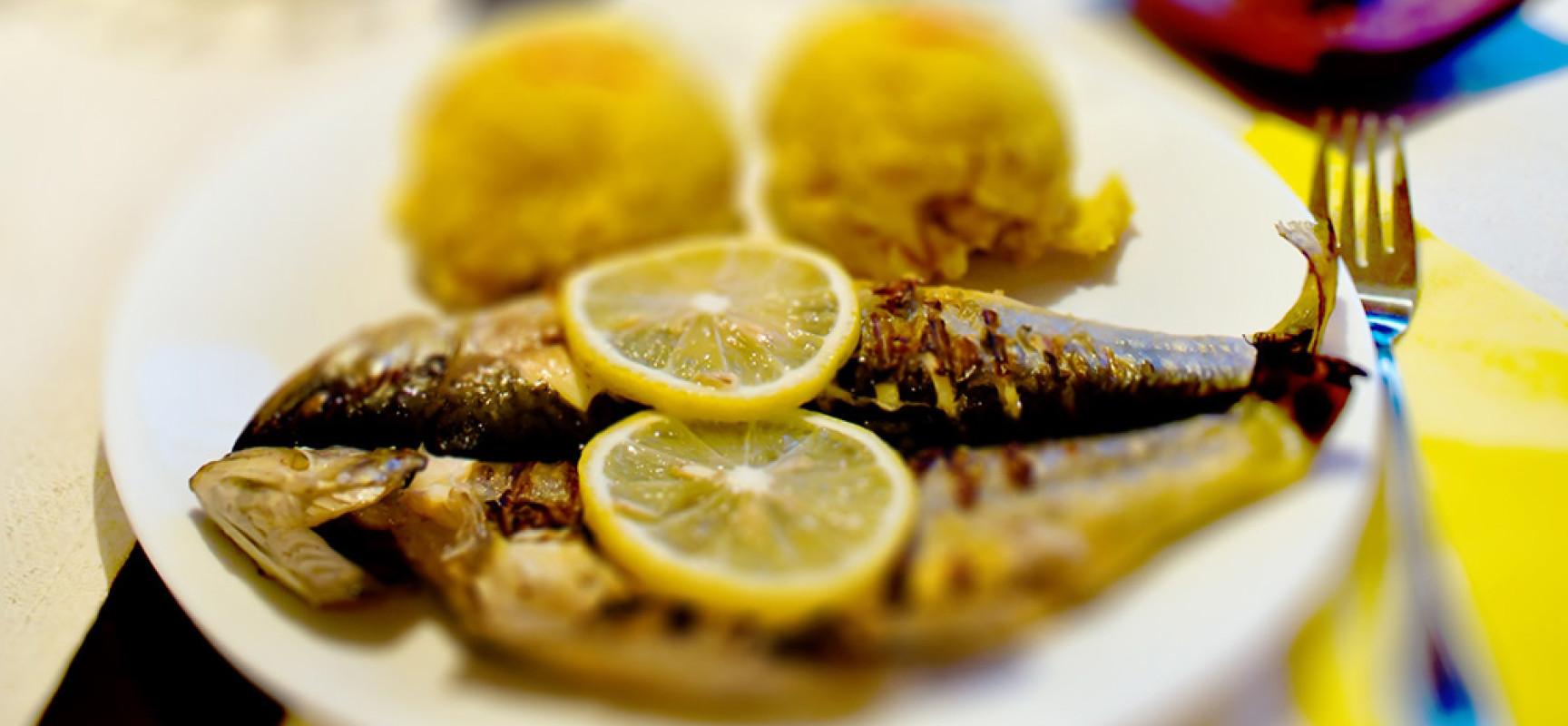 Ryba – na zdrowie!